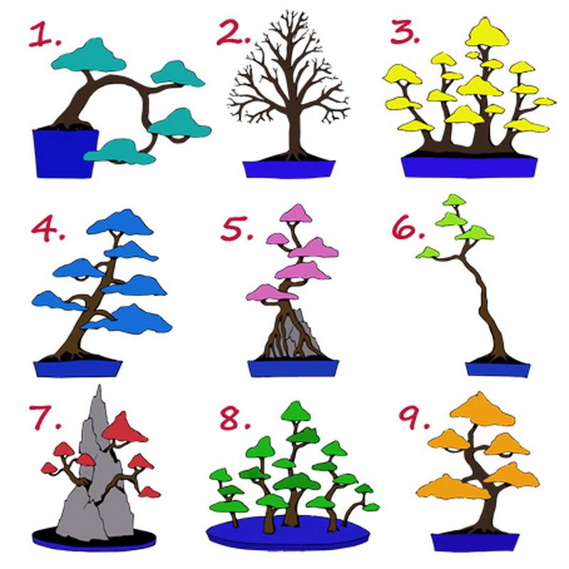 Психологический тест в картинках деревья предшественника, при