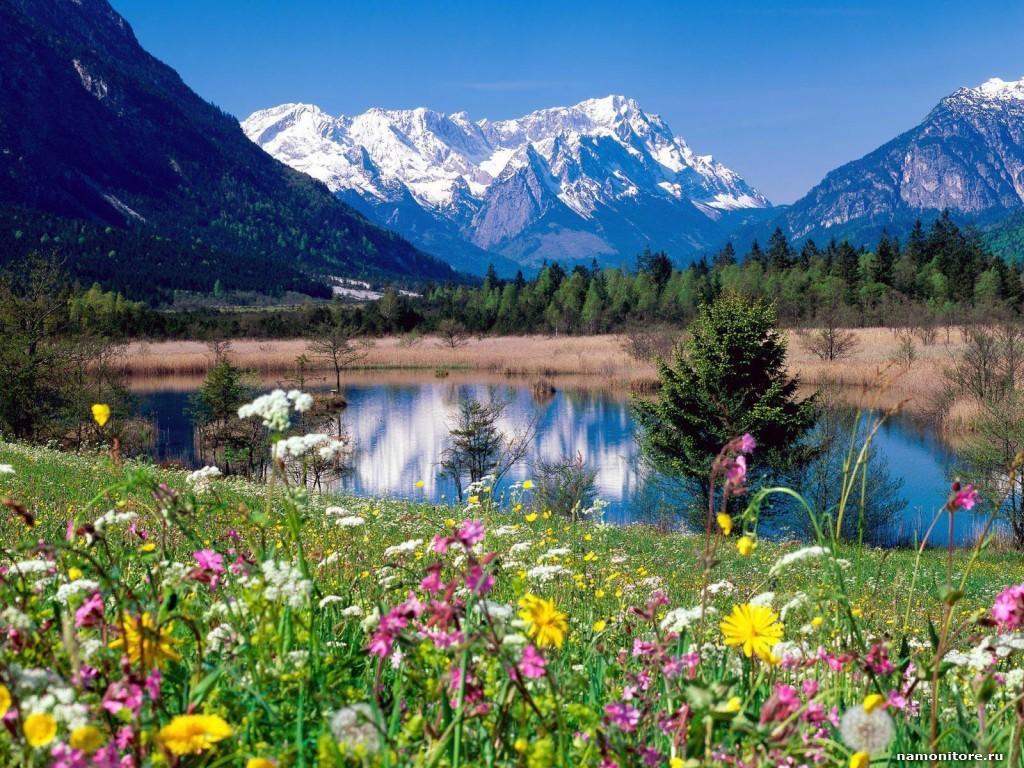 группа иншад картинки пейзажи с красивой природой и цветами лучшие свои