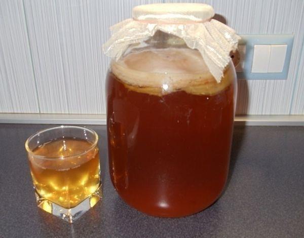 Как сохранить чайный гриб: при длительном отсутствии дома, в отпуске, холодильнике, как сохранить чайный гриб до следующего лета.
