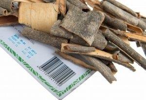 Лечебные свойства коры калины и противопоказания